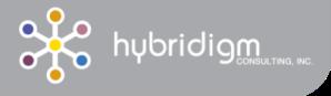 hybridigm